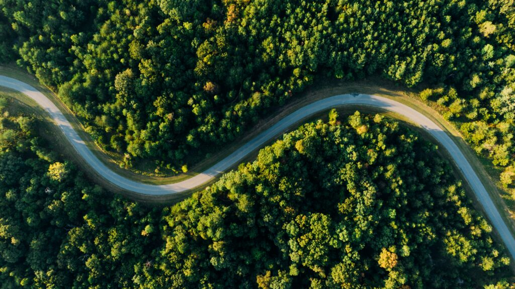Battery-powered future: How can the EU ensure electric vehicles drive the green transport revolution?